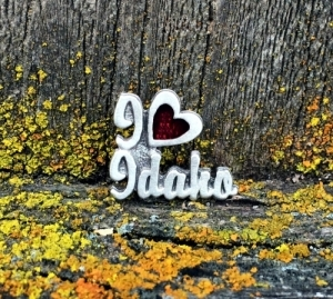 I Heart Idaho Pin